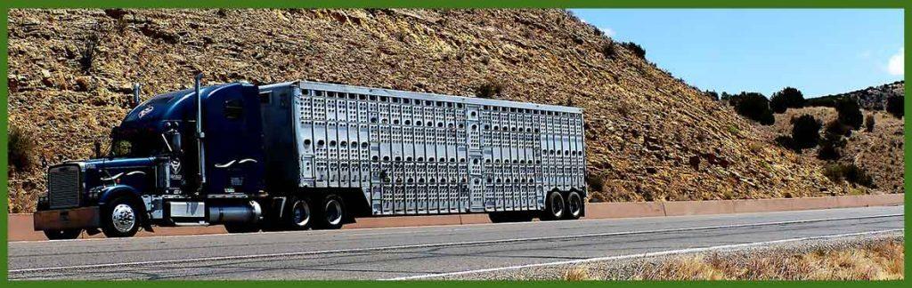 transporte-especial-de-mercancías